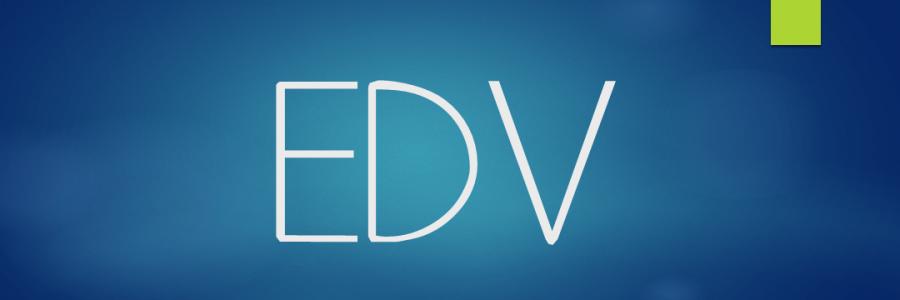 EDV-Beauftragter eines mittelständischen Unternehmens